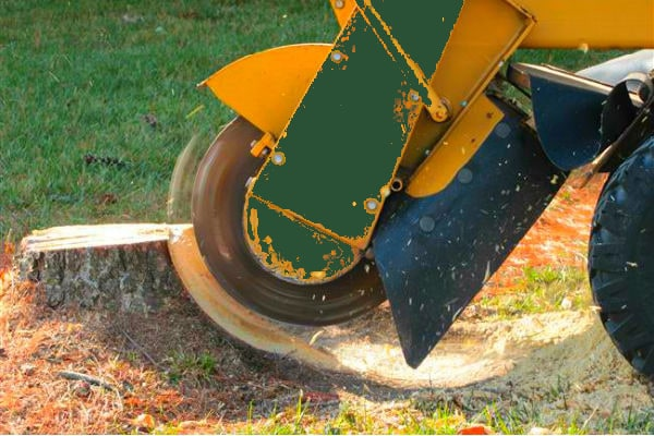 company stump grinder